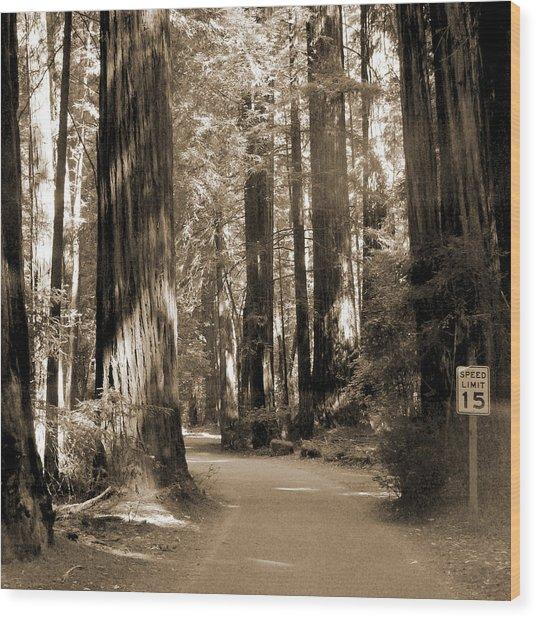 15 Mph Wood Print