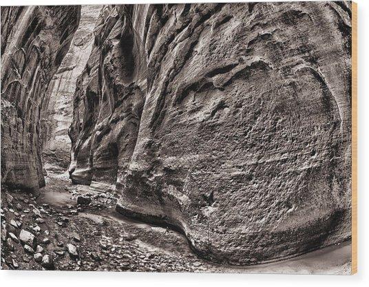 1500 Feet Tall Bn Wood Print by Juan Carlos Diaz Parra