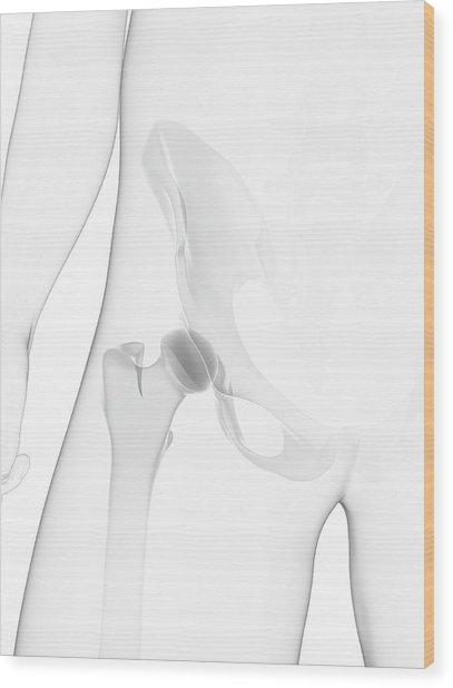 Male Pelvis Bones Wood Print by Sciepro/science Photo Library