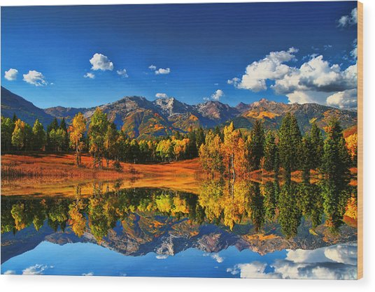 Fall Colors Wood Print