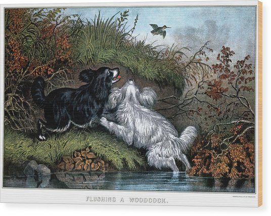 1860s Two Spaniel Dogs Flushing Wood Print