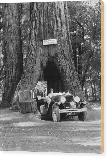 1930s Woman Driving Convertible Car Wood Print