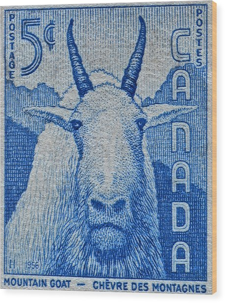 1956 Canada Mountain Goat Stamp Wood Print