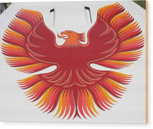1979 Pontiac Firebird Emblem Wood Print by John Telfer