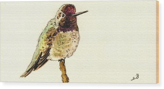Anna S Hummingbird Wood Print