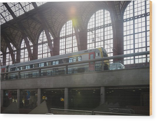 Antwerp Central Station Wood Print