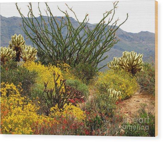 Arizona Springtime Wood Print