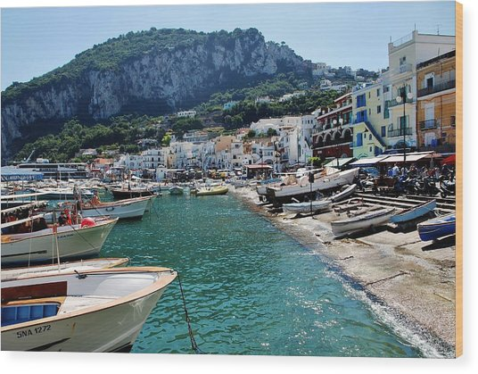 Arrival To Capri  Wood Print