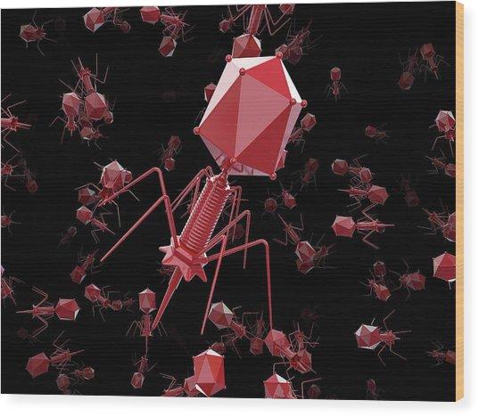 Bacteriophage T4 Viruses Wood Print by Maurizio De Angelis