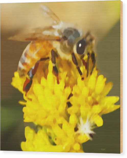 Bee On A Yellow Flower Wood Print