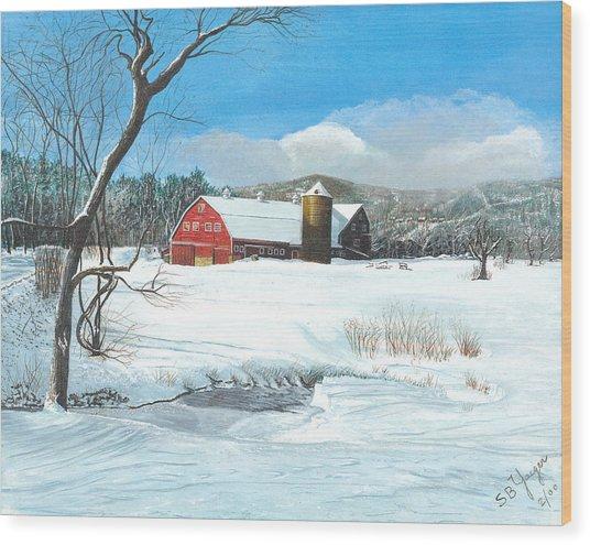 below freezing in New England Wood Print