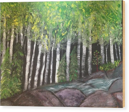 Birches By Falls Wood Print by Paula Brown
