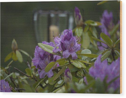 Bloom Wood Print