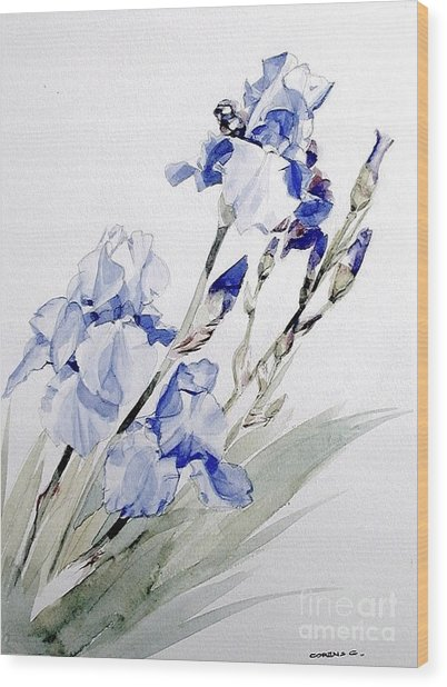 Blue Irises Wood Print