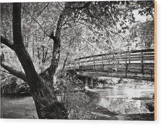 Bridge At Ellison Park Wood Print