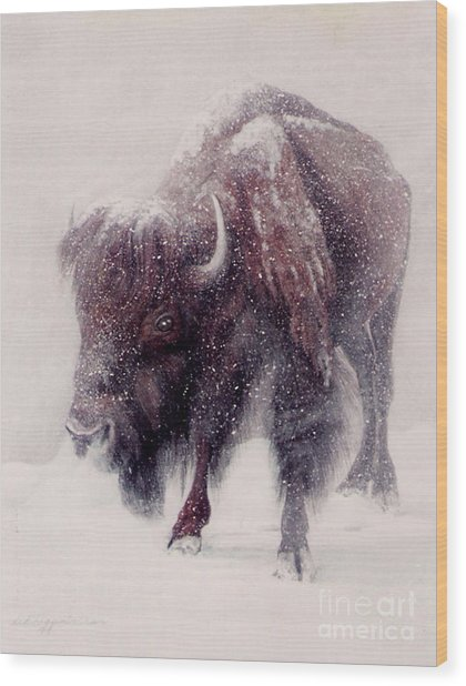 Buffalo Blizzard Wood Print