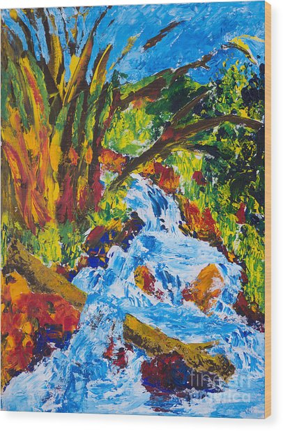 Burch Creek Wood Print