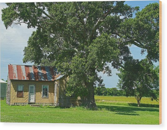 Cajun Home Wood Print by Ronald Olivier