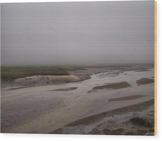 Cape Cod Marsh Wood Print