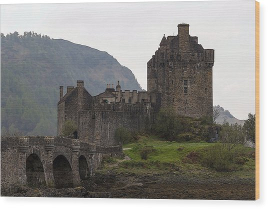 Cartoon - Structure Of The Eilean Donan Castle With A Stone Bridge Wood Print