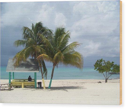 Cayman Beach Wood Print by Robert Teeling