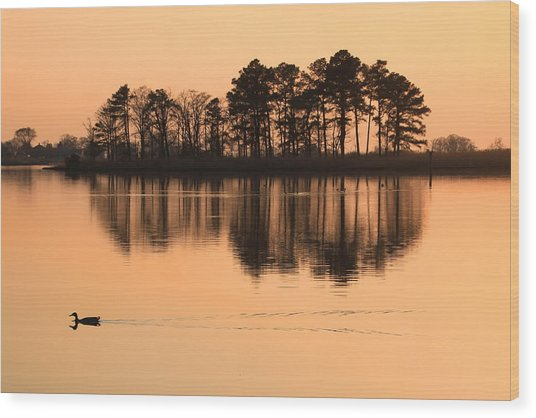 Chesapeake Sunset Wood Print