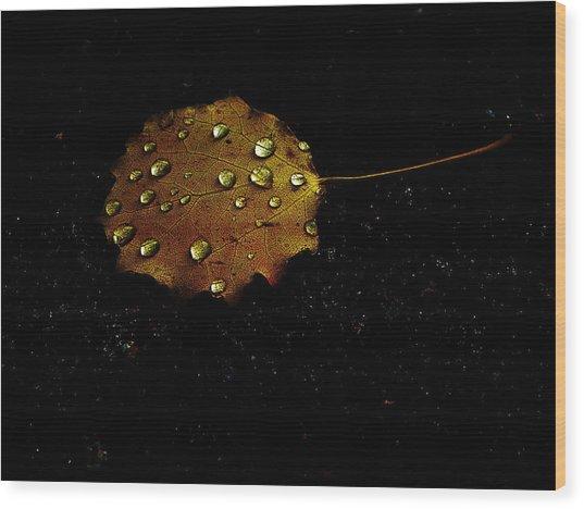 Drops On Autumn Leaf Wood Print