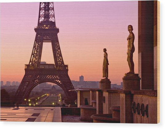 Wood Print featuring the photograph Eiffel Tower At Dawn / Paris by Barry O Carroll