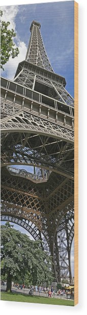 Eiffel Tower Wood Print by Gary Lobdell
