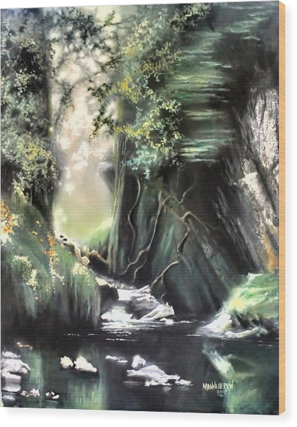 Fairy Glen Wood Print