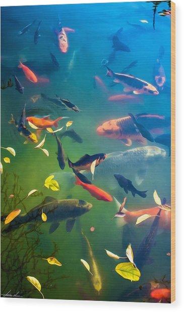 Fish Pond Wood Print