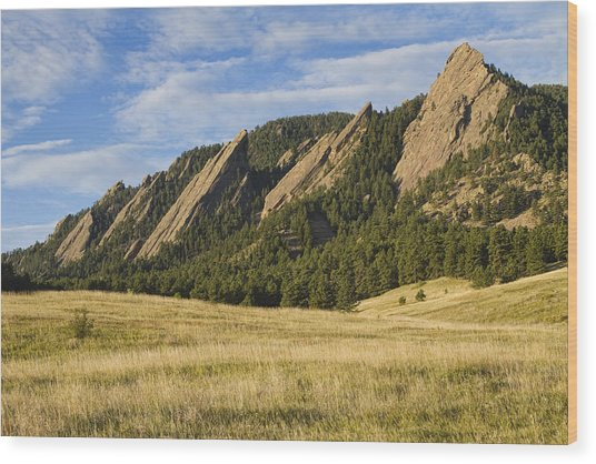 Flatirons With Golden Grass Boulder Colorado Wood Print