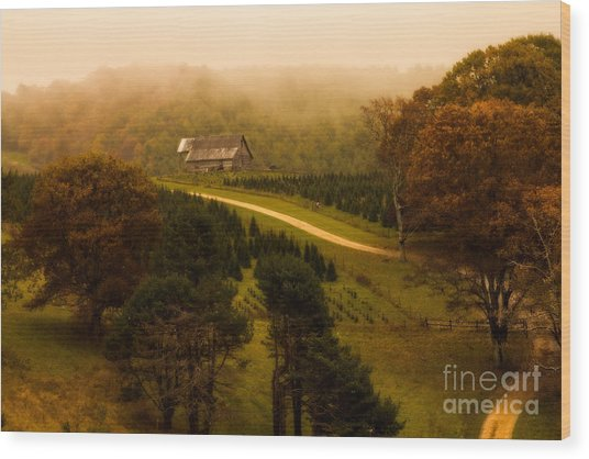 Foggy Autumn Country Road Wood Print