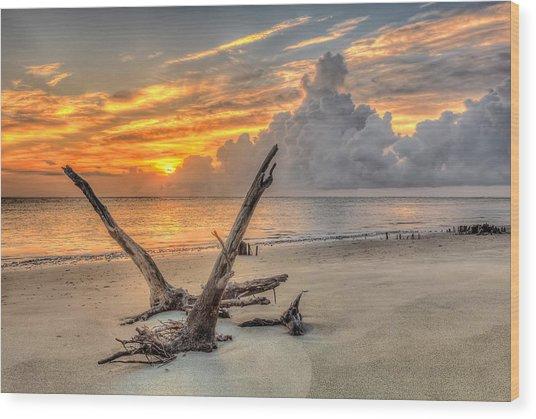 Folly Beach Driftwood Wood Print
