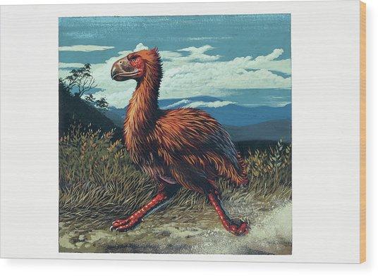 Gaston's Bird Wood Print by Deagostini/uig