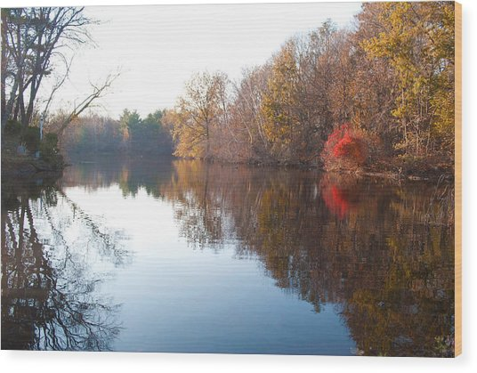 Gingerbread Lake Wood Print by Gretchen Lally