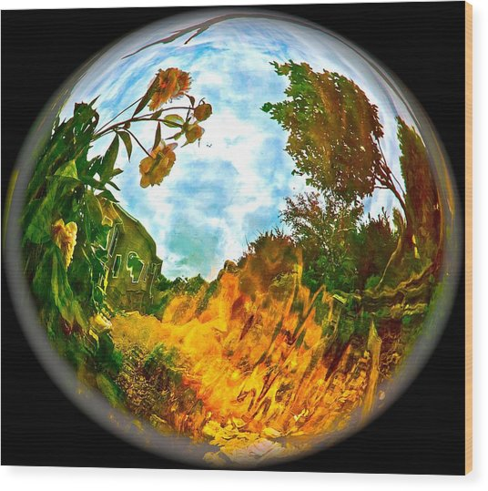 Global Warmth Wood Print