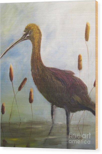 Glossy Ibis Wood Print by Sharon Burger