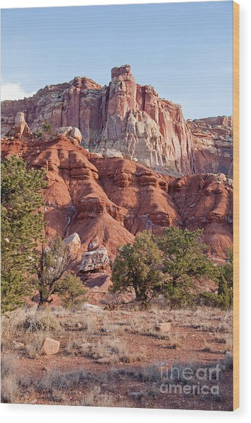 Golden Throne Capitol Reef National Park Wood Print