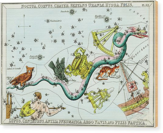 Hydra Constellation Wood Print by Royal Astronomical Society/science Photo Library