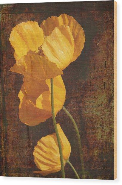Icelandic Poppy Wood Print