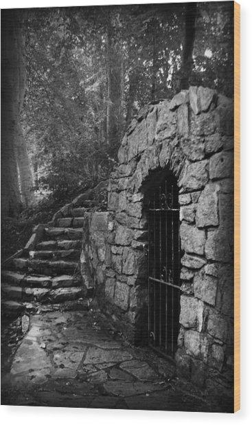Iron Door In A Garden Wood Print
