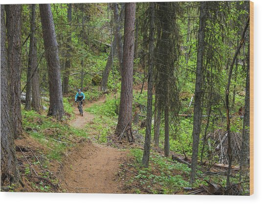 Jared Lynch Mountain Biking The North Wood Print by Chuck Haney