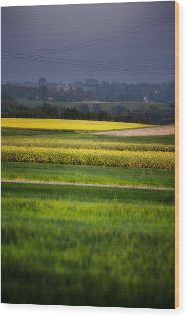 Landscape Wood Print by Anna Gora