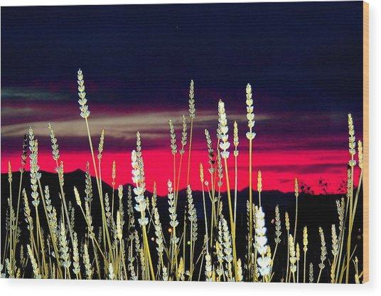 Lavender Sunset Wood Print by Mavis Reid Nugent