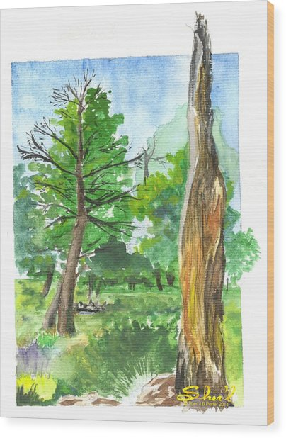 Lightening Strike Tree Wood Print