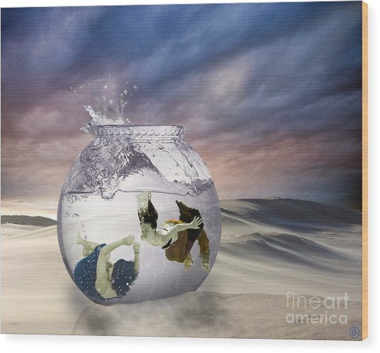 2 Lost Souls Living In A Fishbowl Wood Print by Linda Lees