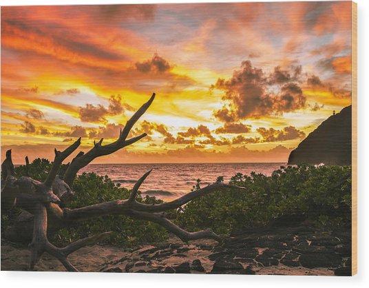 Makapuu Sunrise 4 Wood Print
