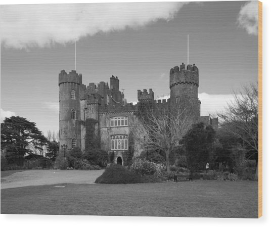 Malahide Castle Wood Print
