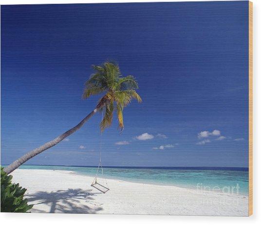 Maldives 06 Wood Print by Giorgio Darrigo